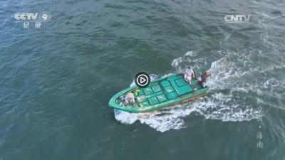 视频 | 航拍中国--海南