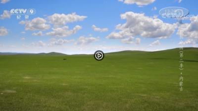 视频 | 航拍中国--内蒙古