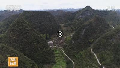 视频   【乡村游】贵州荔波 地球腰带上的绿宝石