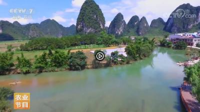视频   【乡村游】广西靖西的奇趣之旅