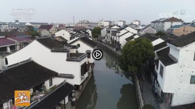 视频   【乡村游】寻味上海宝山