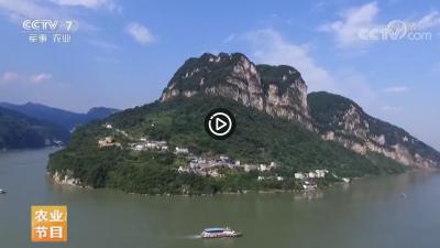 视频   【乡村游】湖北宜昌的三峡人家