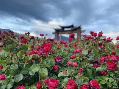 丽江的村庄究竟有多美?