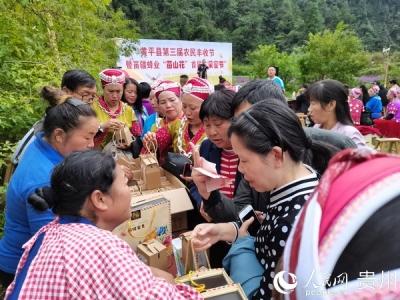 第三届黄平县丰收节暨银项圈文化稻田音乐节举行(组图)