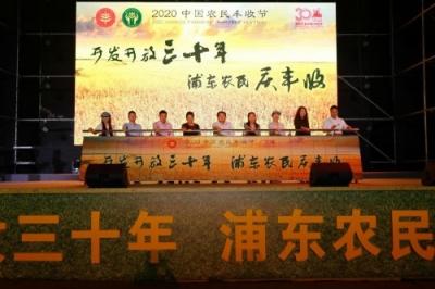 丰收节前,专家学者在上海浦东共议乡村振兴之路