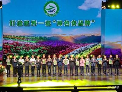 """2020年云南省""""10强企业""""""""20佳创新企业""""公布"""