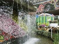 图集 | 遇见更美的花之城