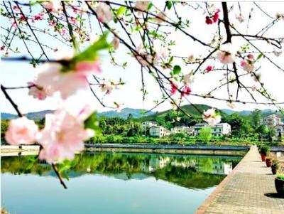 綦江:打造生态宜居好环境 乡村美如画幸福踏歌来
