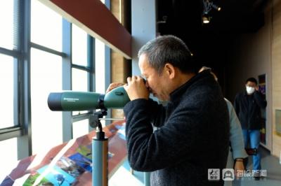 东营市观鸟协会到黄河口自然保护区参观鸟类博物馆
