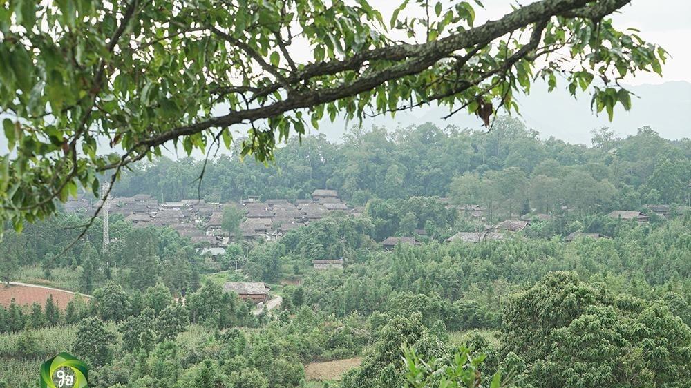 图集   麻栗坡县董干镇城寨村