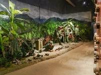 图集 | 英雄老山圣地——地雷展览馆