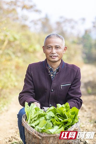 走出绝壁·特写丨跨越600多里他乡挑大梁 推动蔬菜产业发展