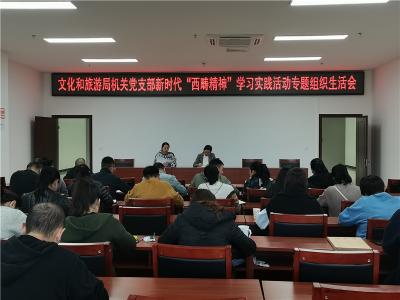 文山市文旅局机关党支部召开专题组织生活会