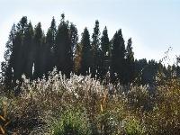 图集 | 南滇池湿地公园 周末休闲好去处