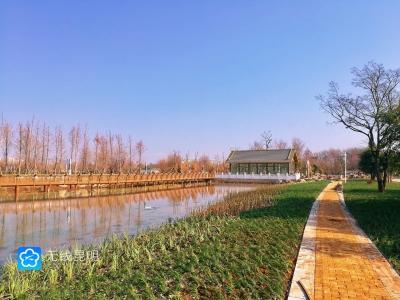 湿地相连成片,展现美丽滇池新画卷!斗南湿地二期即将开放