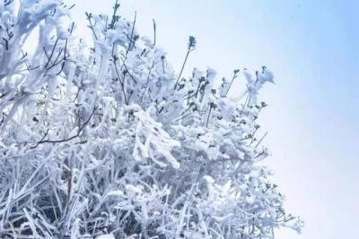 清远出现首场冰挂,美翻整个广东!