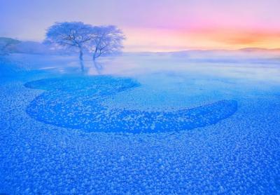 在北疆的冬天,深情相遇,放飞梦想!