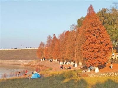 广西新增3处国家湿地公园
