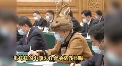 """""""小鹿帽""""人大代表受关注 本人回应:不是小鹿,是狍子"""