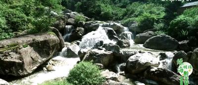 中国天然氧吧专题片