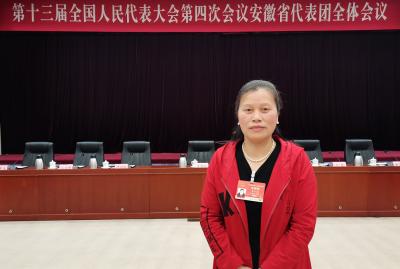 全国人大代表李小莉:建议春节假期从7天延长到10天左右