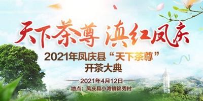 """【直播】2021滇红凤庆——""""天下茶尊""""开茶大典"""