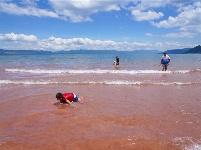 图集 | 澄江红沙滩 浪漫的颜色