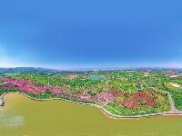 图集丨太平湖森林小镇景区