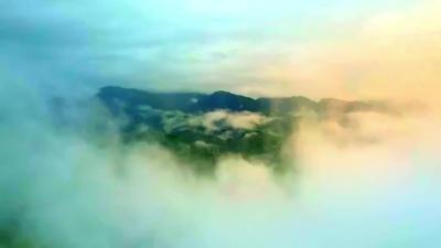视频   超萌小象宝回家后发了首单曲!