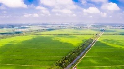 联手打造供应链!一年来,超300种崇明绿色农产品直送上海市民餐桌