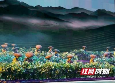 《天下茶道》点映献礼第五届湖南·安化黑茶文化节