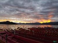 鸥翩湖面,最近的泸沽湖真浪漫(组图)