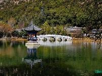 图集|丽江黑龙潭公园有序开放,景美人少花正开!
