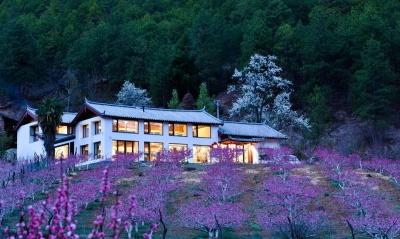 丽江半山酒店·为一间房赴一座城丨到茶马道桃花谷丽世山居享受慢旅生活
