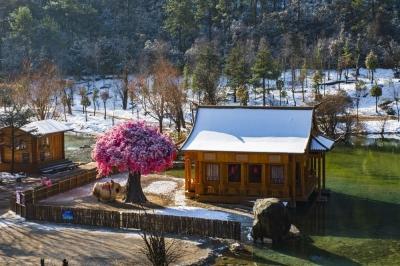 雪后初晴的丽江有多美,美图新鲜出炉!