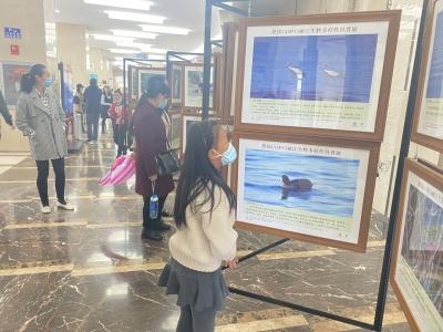 """COP15丨""""和风绮丽 万物争荣""""丽江生物多样性之美科普摄影展走进市图书馆"""