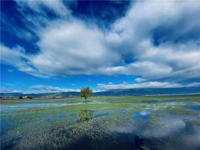 你能想到的所有诗情画意,都藏在丽江深秋的拉市海里......