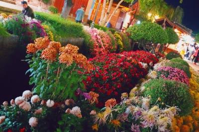 金秋十月的丽江古城又上央视了!美得极致!错峰出游正当时